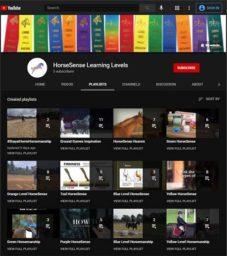 HorseSense Learning Levels on YouTube