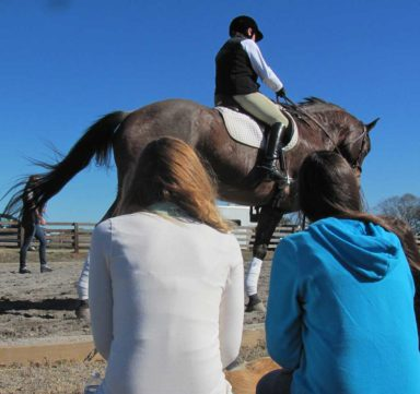 students watching rider and horse while instructor teaches clinic