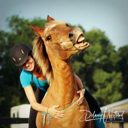 Heaven has pony additude!