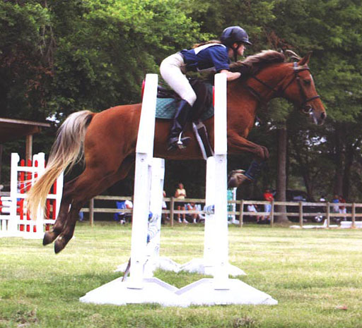 pony and rider jumping oxer in show