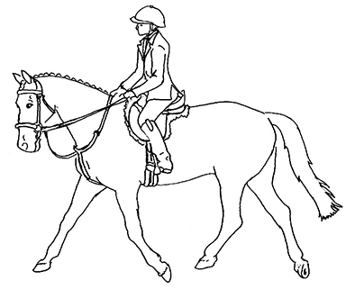line drawing of English rider