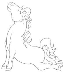 line drawing of horse doing push-ups