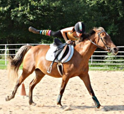 athletic equestrain vaulting onto cantering pony's back