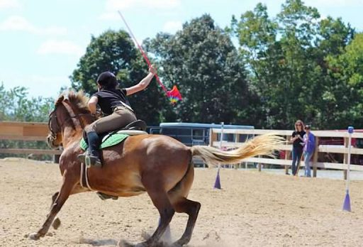mounted games flag race