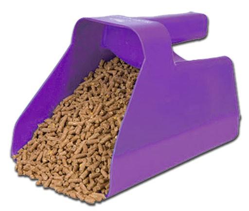 equine feed scoop full of grain
