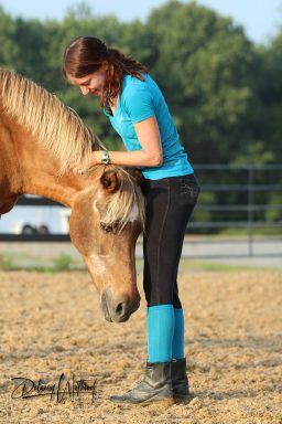 pony snuggles with trainer during groundwork session