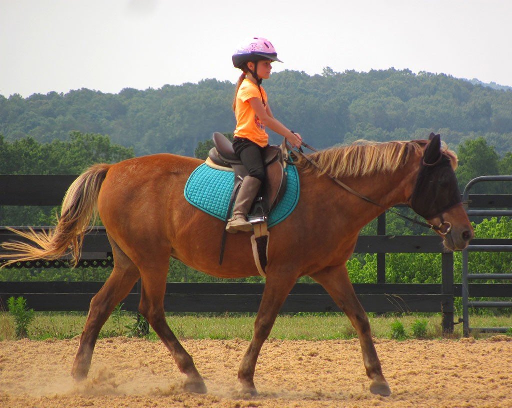 Heaven teaches No-Stirrup November lesson