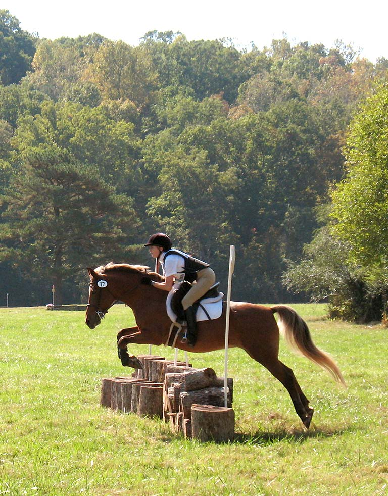 cross-country jump requiring fitness for horse and rider