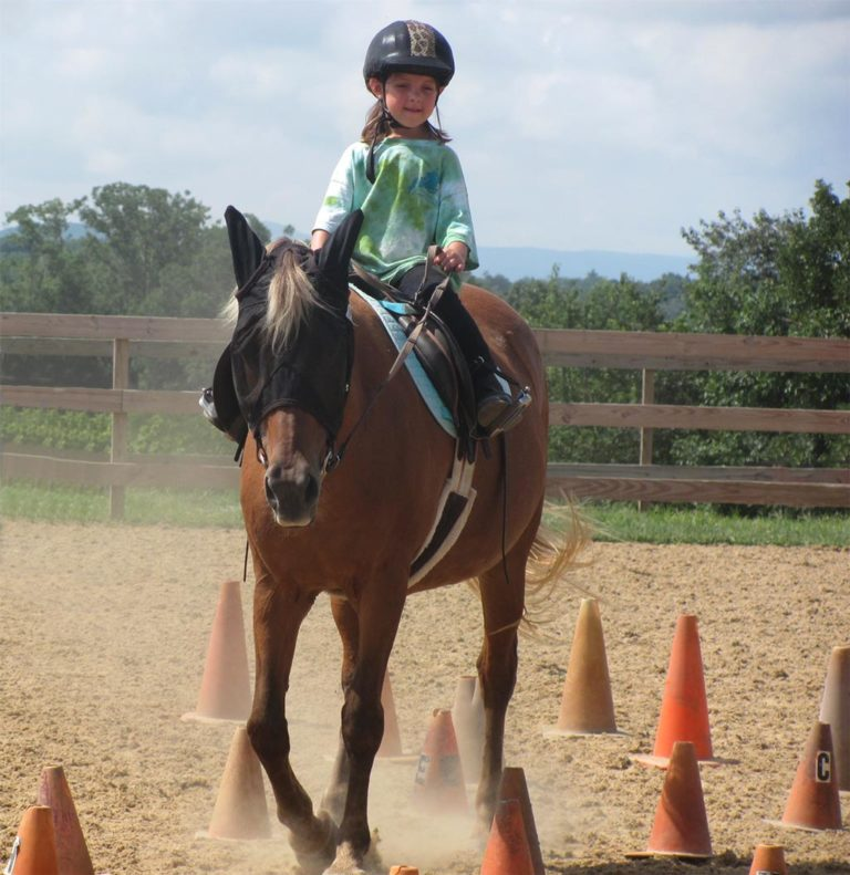 student and pony navigate through trail of cones
