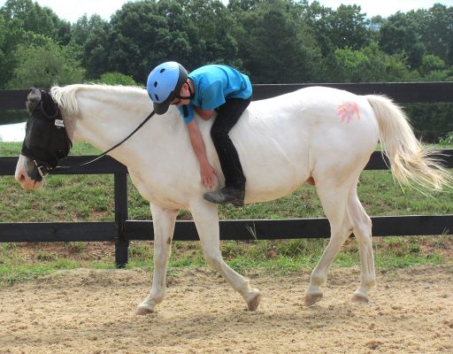 bareback warm-up stretch for No-Stirrup November