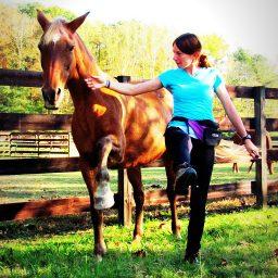 trainer using treats to teach pony tricks